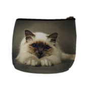 Picture of Animal Print Purse With Cat - ANCP06
