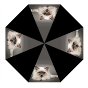 Picture of Animal Print Umbrella With Cat - UMB23A
